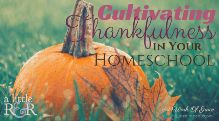 What tone are you setting for your homeschool? One of regret and angst? Or one of thankfulness? Here, I share how you can begin Cultivating Thankfulness in Your Homeschool.