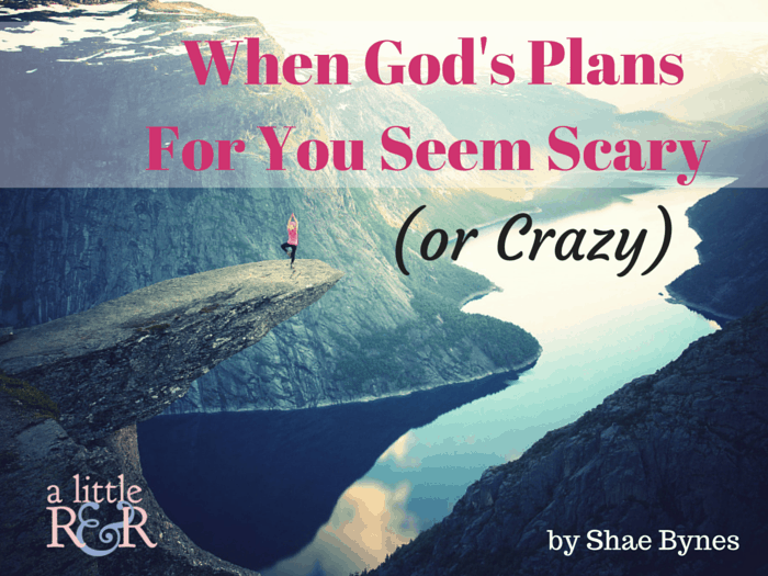 Do God's plans seem scary to you? Here is what you need to remember when you're afraid to take that leap of faith to fulfill the purpose for which God created you!