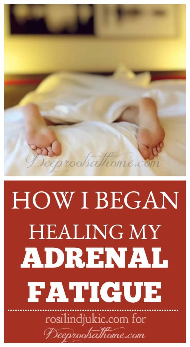 How I Began Healing My Adrenal Fatigue By Rosilind Jukic?, health, rest, recuperation, adrenaline junkie, fun, excitment, drained, coffee addict, chocolate, weight gain, mononucleosis, hives, panic attacks, pregnancy, miscarriage, female hormones, low cortisol level, endocrine system, stress, adrenal glands, adrenal crash, success, desperation, ketogenic diet, migraine headaches, pain,low carbohydrate, moderate protein, high fat diet, anti-inflammatory, eliminate grains, starchy vegetables, sugar, fruit, hormone function, hormone imbalances, thyroid dysfunction, insulin resistance, diabetes, glucose, energy, efficient energy, fat, estrogen, insulin, ketosis, Bosnia,